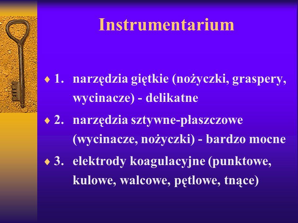 Instrumentarium 1. narzędzia giętkie (nożyczki, graspery, wycinacze) - delikatne.