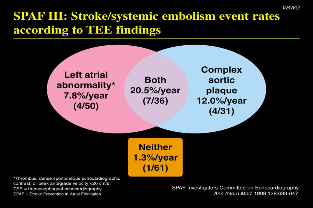SPAF III: Stroke/systemic embolism event rates according to TEE findings