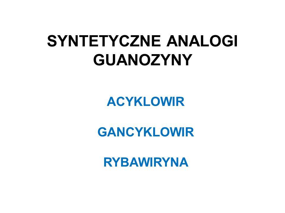 SYNTETYCZNE ANALOGI GUANOZYNY