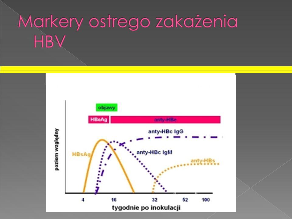 Markery ostrego zakażenia HBV