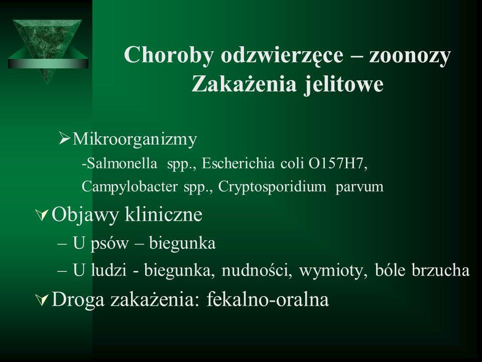 Choroby odzwierzęce – zoonozy Zakażenia jelitowe