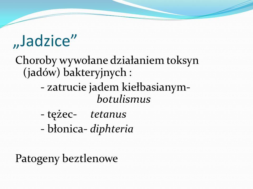 """Jadzice"