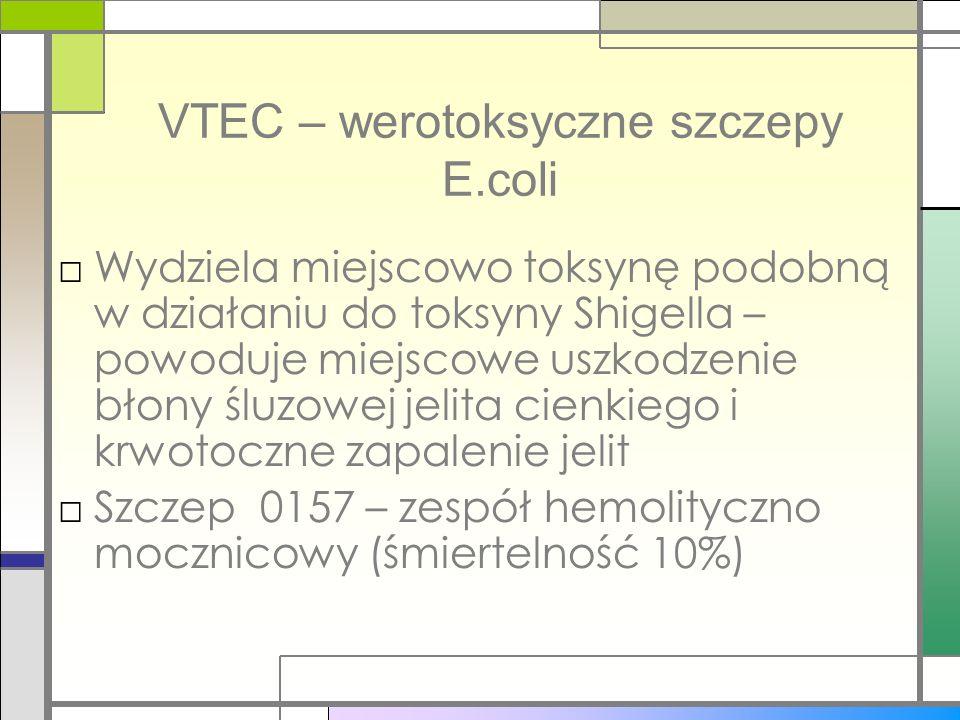 VTEC – werotoksyczne szczepy E.coli