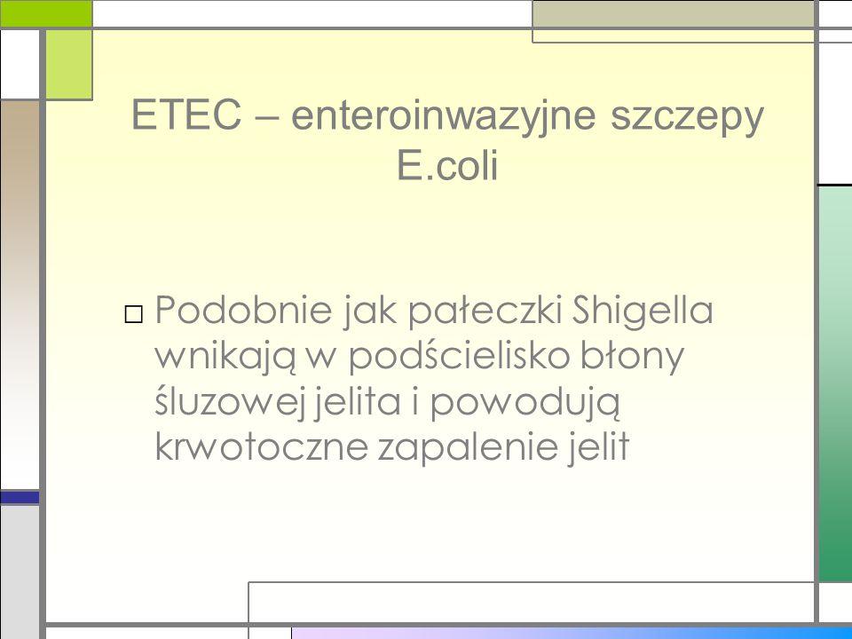 ETEC – enteroinwazyjne szczepy E.coli