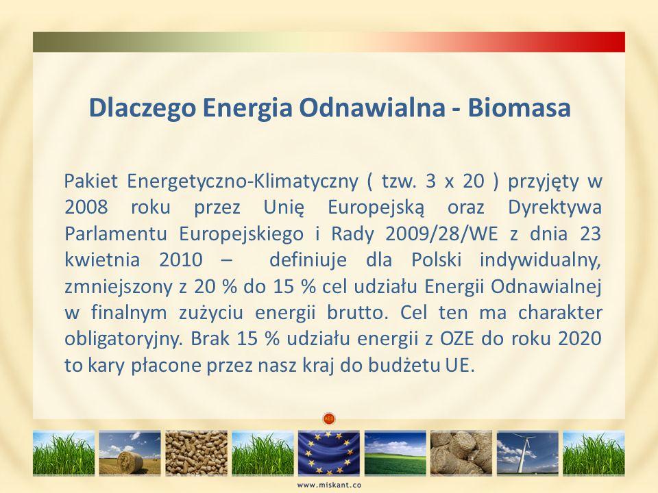 Dlaczego Energia Odnawialna - Biomasa