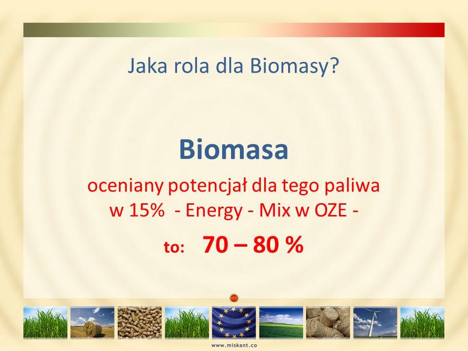 oceniany potencjał dla tego paliwa w 15% - Energy - Mix w OZE -