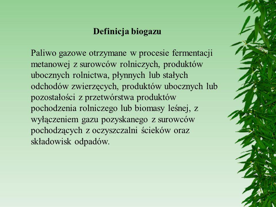Definicja biogazu