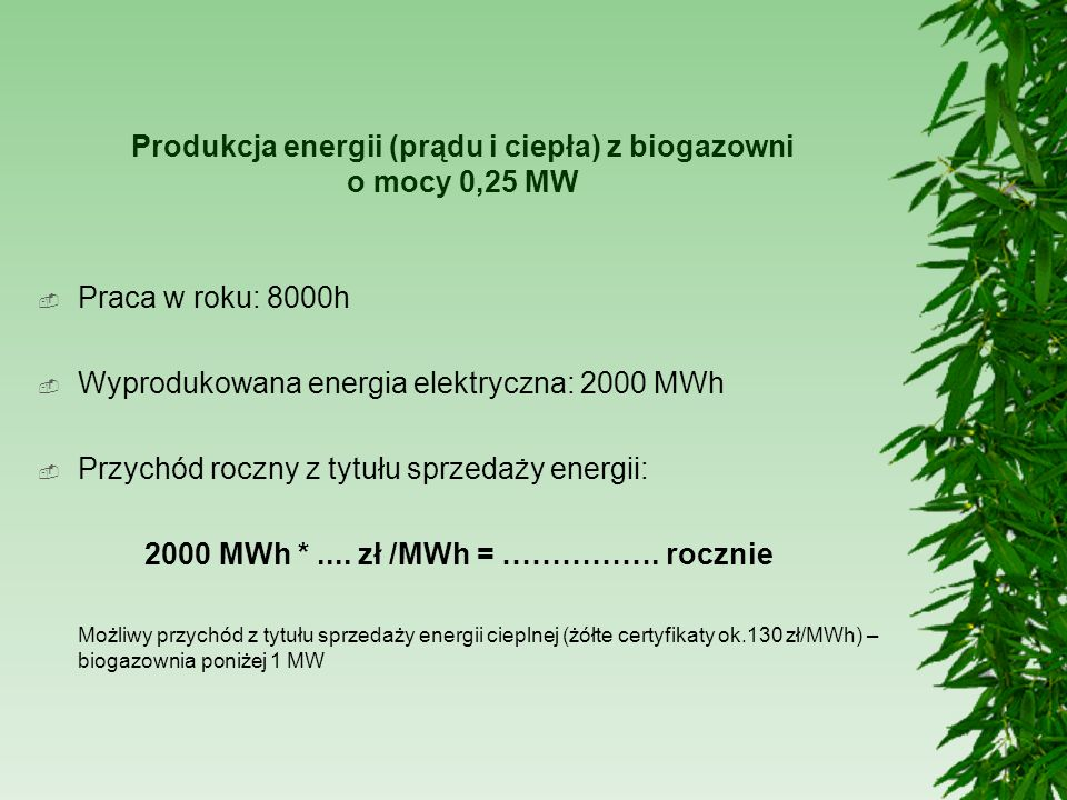 Produkcja energii (prądu i ciepła) z biogazowni o mocy 0,25 MW