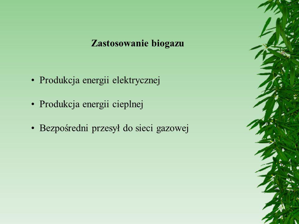 Zastosowanie biogazu Produkcja energii elektrycznej.