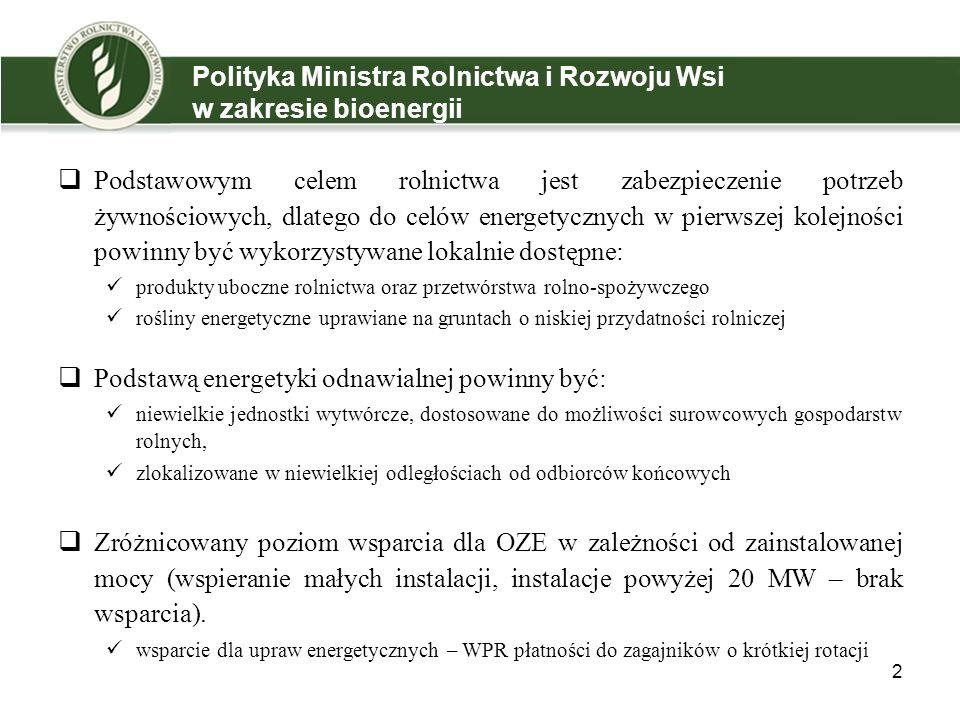 Polityka Ministra Rolnictwa i Rozwoju Wsi w zakresie bioenergii