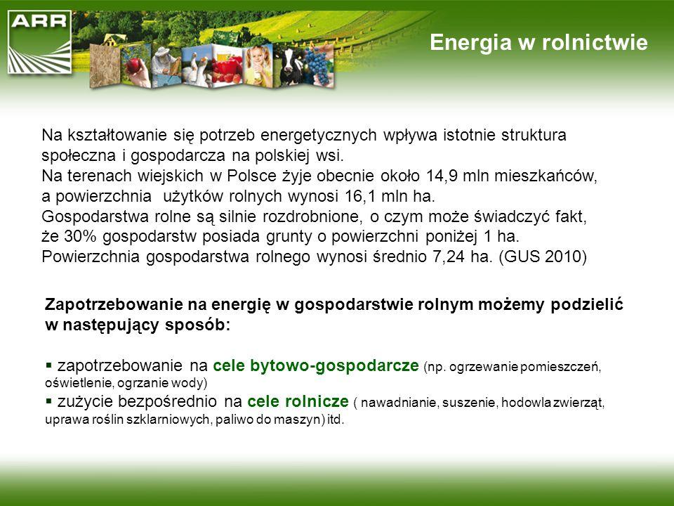 Energia w rolnictwie Na kształtowanie się potrzeb energetycznych wpływa istotnie struktura społeczna i gospodarcza na polskiej wsi.