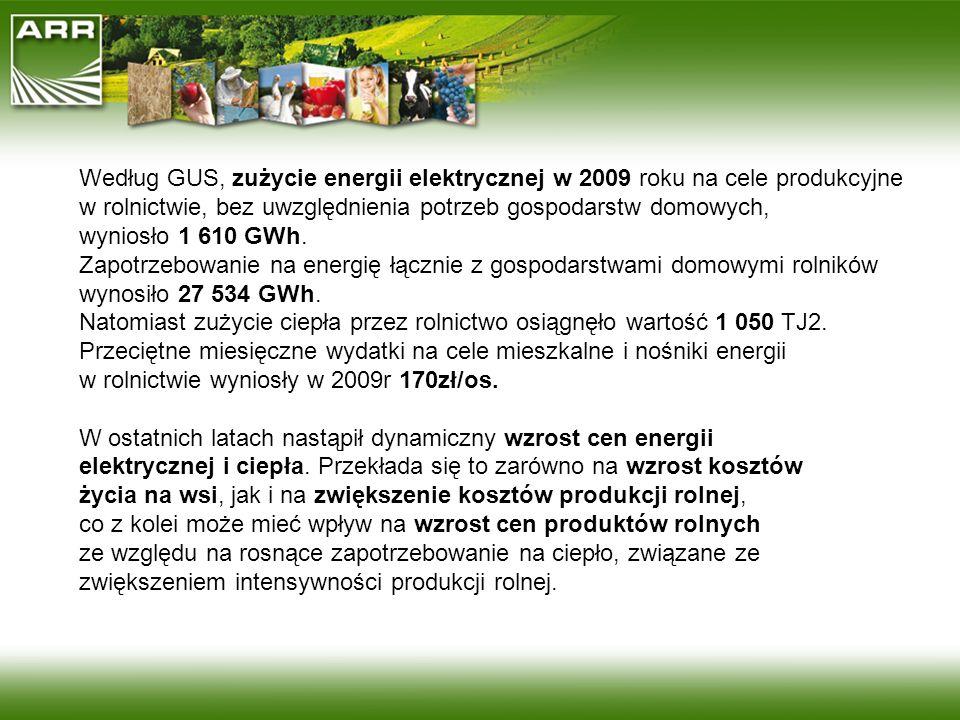 Według GUS, zużycie energii elektrycznej w 2009 roku na cele produkcyjne