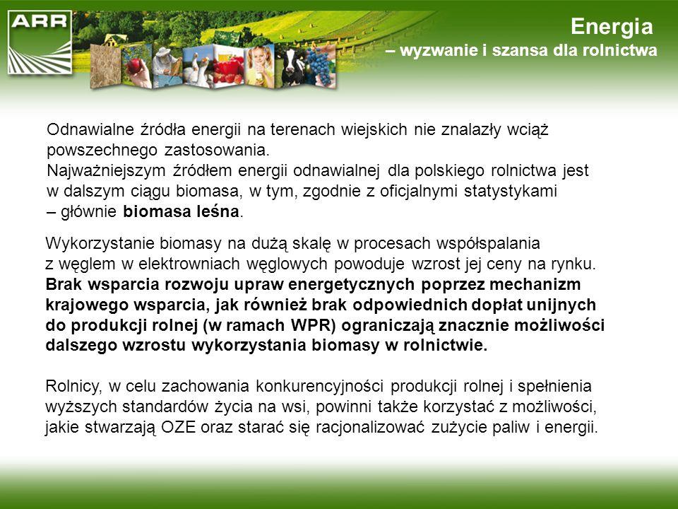 Energia – wyzwanie i szansa dla rolnictwa