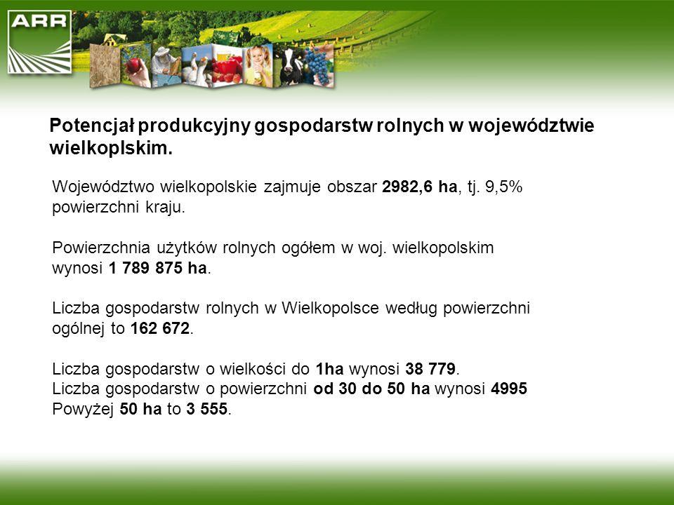 Potencjał produkcyjny gospodarstw rolnych w województwie wielkoplskim.
