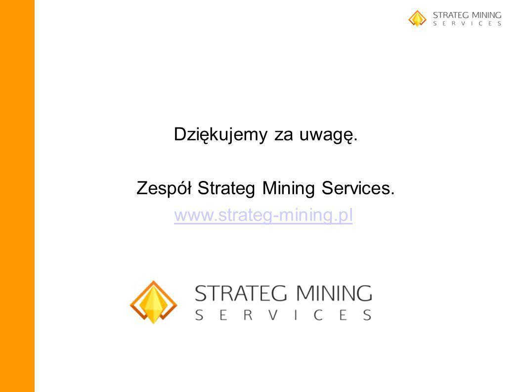 Zespół Strateg Mining Services.