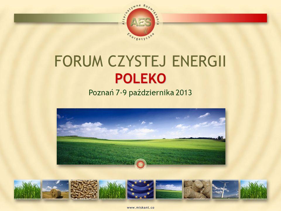 FORUM CZYSTEJ ENERGII POLEKO Poznań 7-9 października 2013