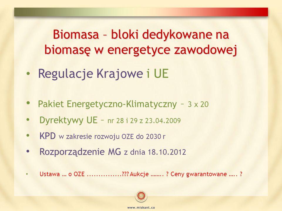 Biomasa – bloki dedykowane na biomasę w energetyce zawodowej