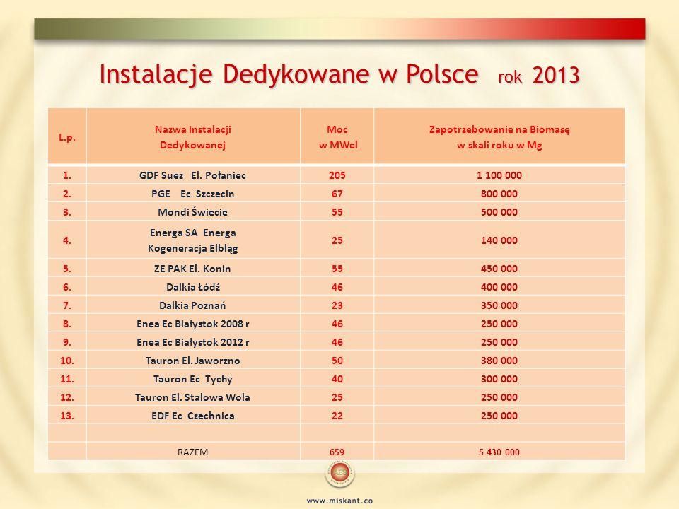 Instalacje Dedykowane w Polsce rok 2013