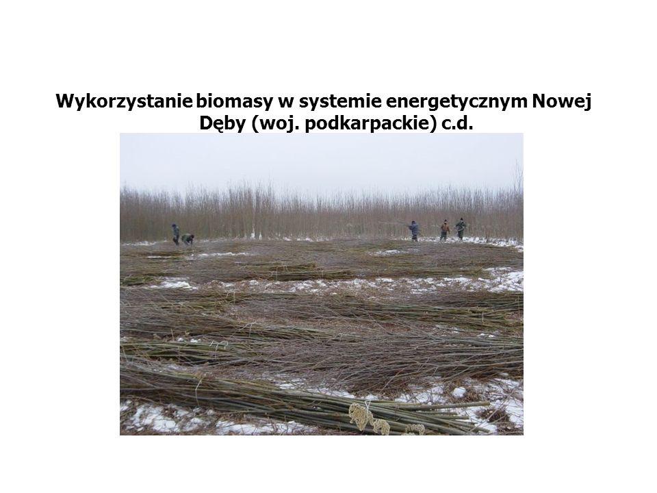 Wykorzystanie biomasy w systemie energetycznym Nowej Dęby (woj