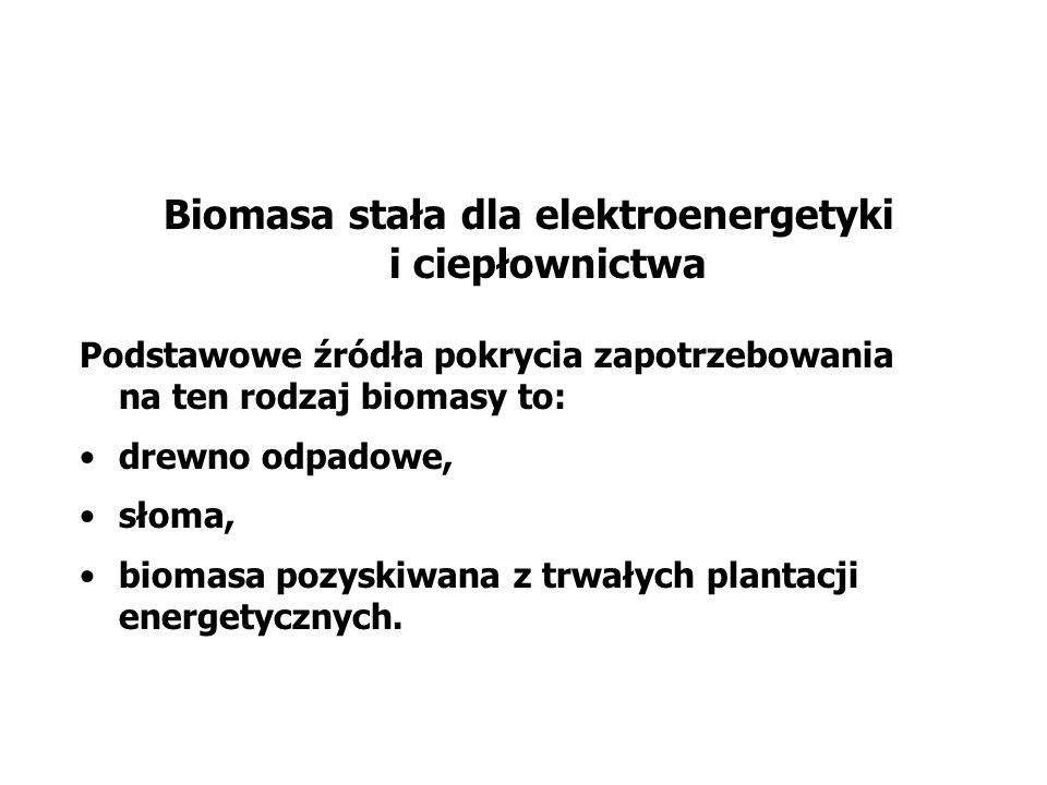 Biomasa stała dla elektroenergetyki i ciepłownictwa