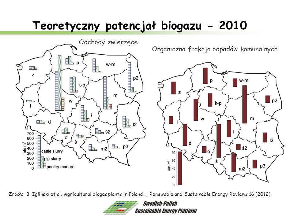 Teoretyczny potencjał biogazu - 2010