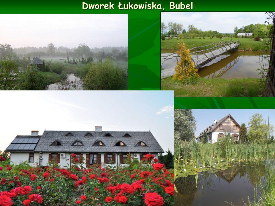 Dworek Łukowiska, Bubel