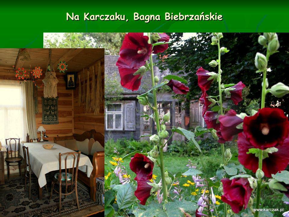 Na Karczaku, Bagna Biebrzańskie
