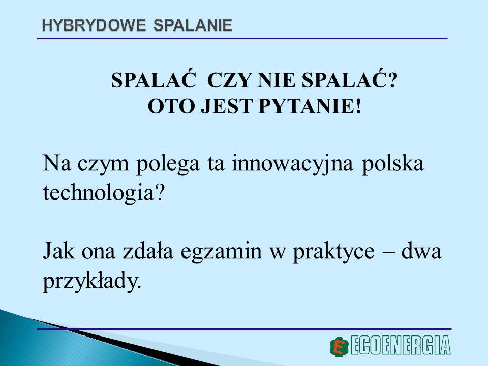 Na czym polega ta innowacyjna polska technologia
