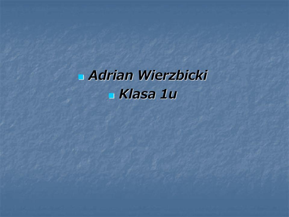 Adrian Wierzbicki Klasa 1u