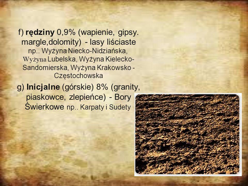 f) rędziny 0,9% (wapienie, gipsy. margle,dolomity) - lasy liściaste np