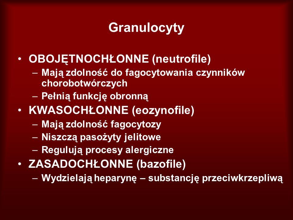 Granulocyty OBOJĘTNOCHŁONNE (neutrofile) KWASOCHŁONNE (eozynofile)