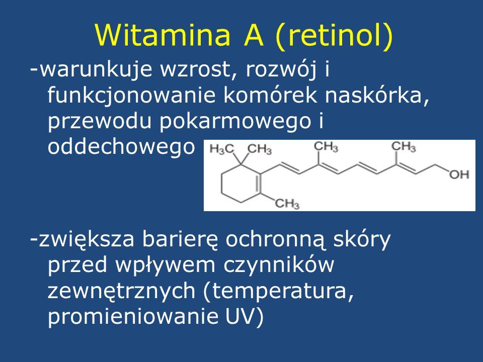 Witamina A (retinol)