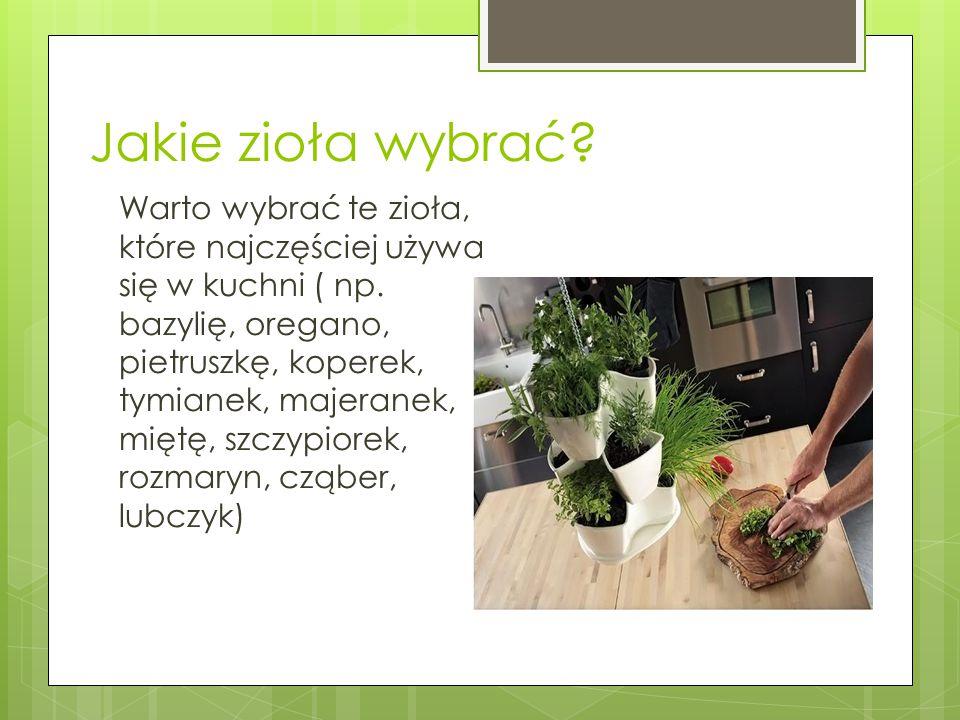 Jakie zioła wybrać