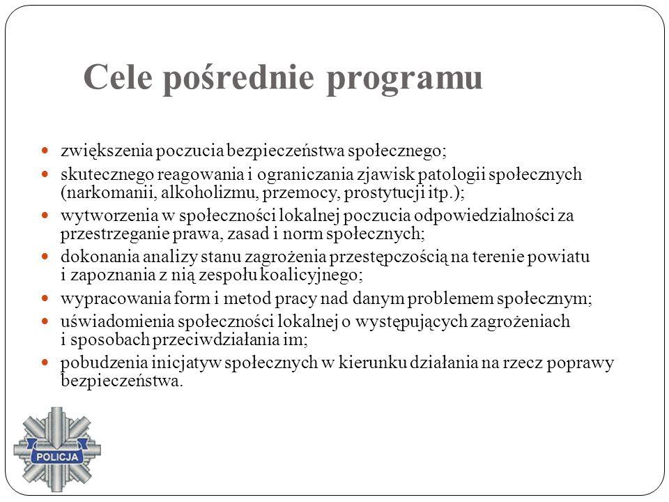Cele pośrednie programu