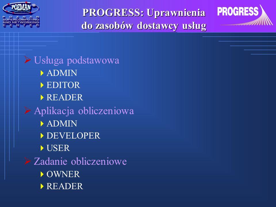 PROGRESS: Uprawnienia do zasobów dostawcy usług