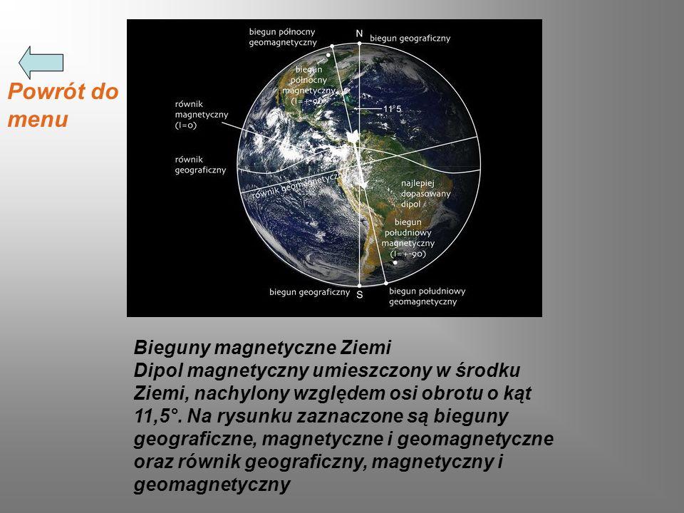Powrót do menu Bieguny magnetyczne Ziemi
