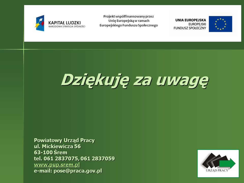 Dziękuję za uwagę Powiatowy Urząd Pracy ul. Mickiewicza 56 63-100 Śrem