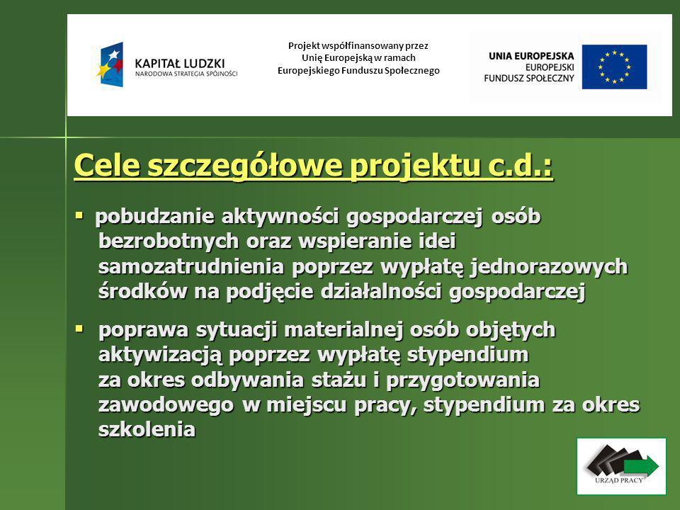 Cele szczegółowe projektu c.d.: