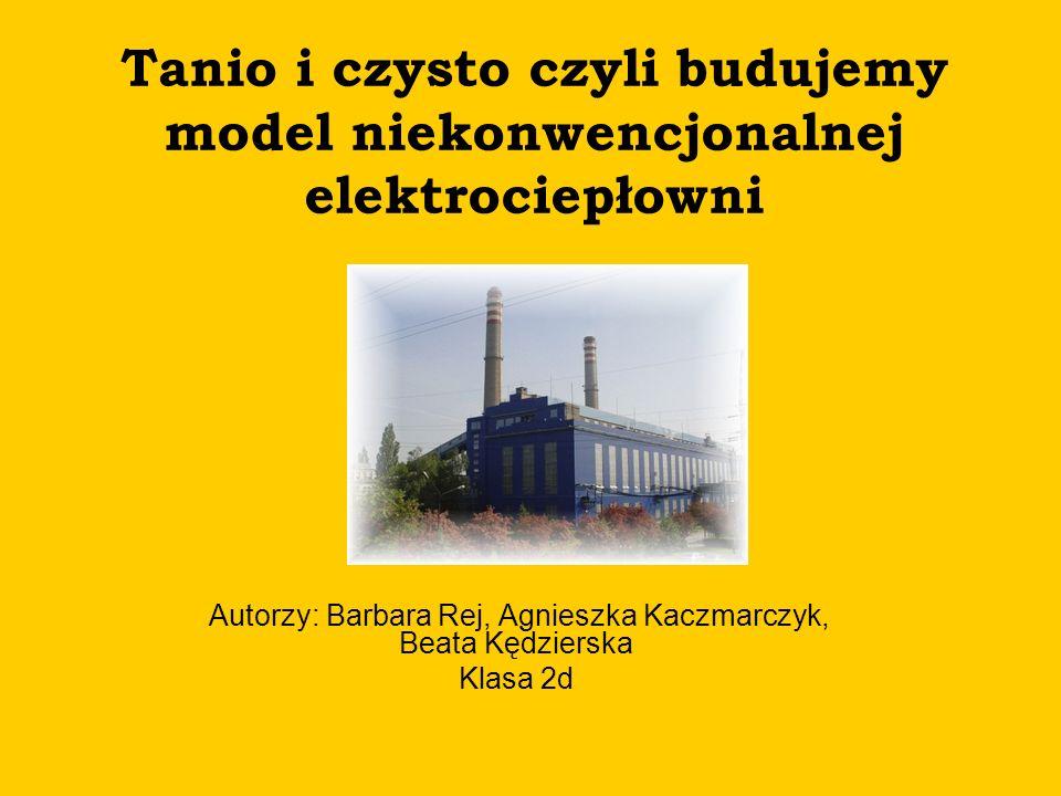 Autorzy: Barbara Rej, Agnieszka Kaczmarczyk, Beata Kędzierska Klasa 2d