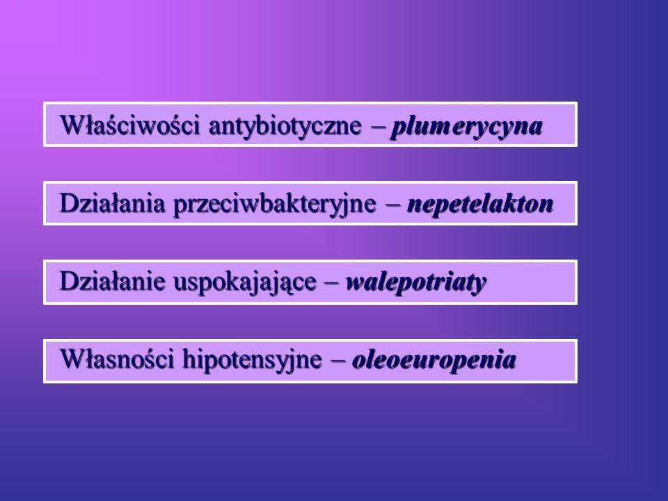Właściwości antybiotyczne – plumerycyna