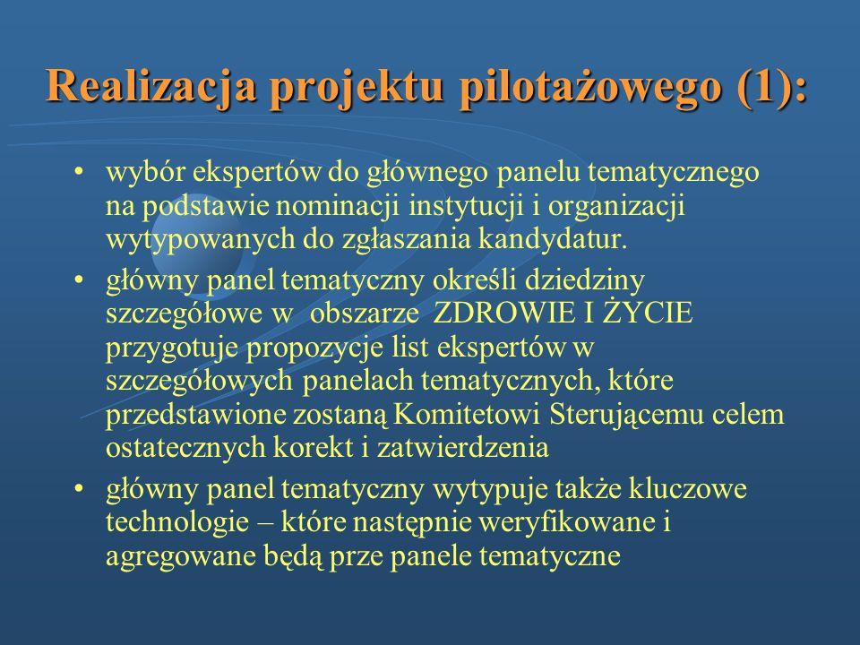 Realizacja projektu pilotażowego (1):
