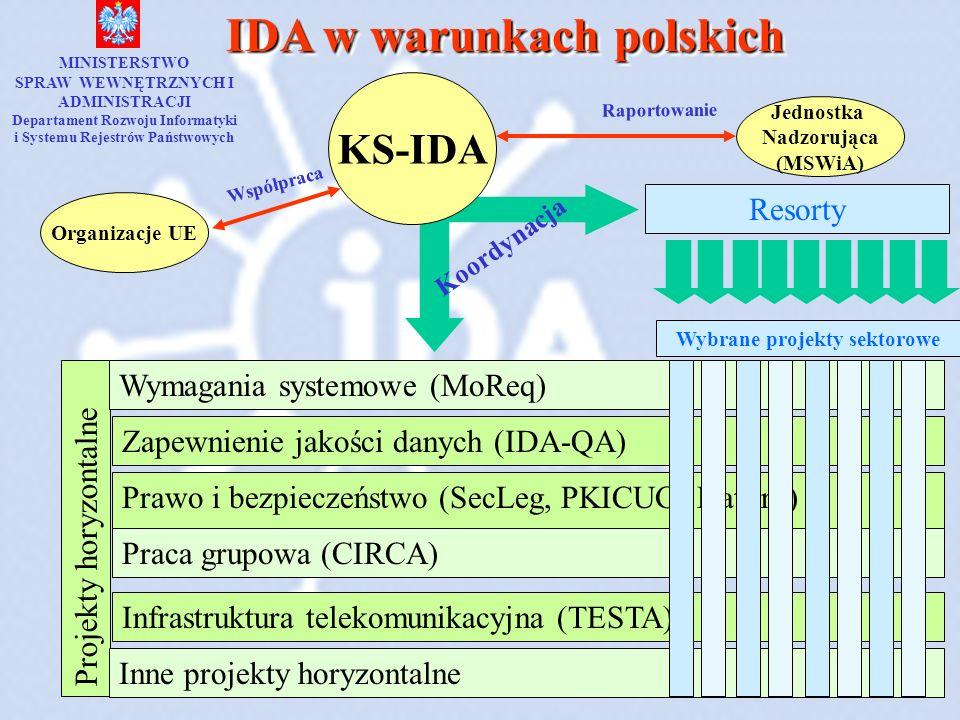 IDA w warunkach polskich