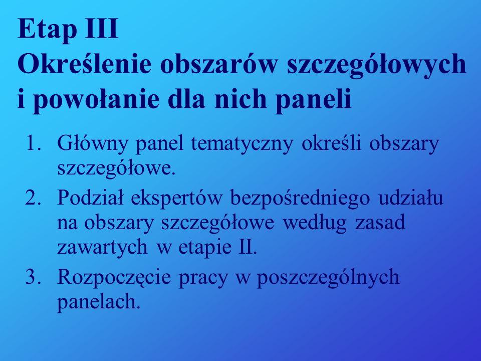 Etap III Określenie obszarów szczegółowych i powołanie dla nich paneli
