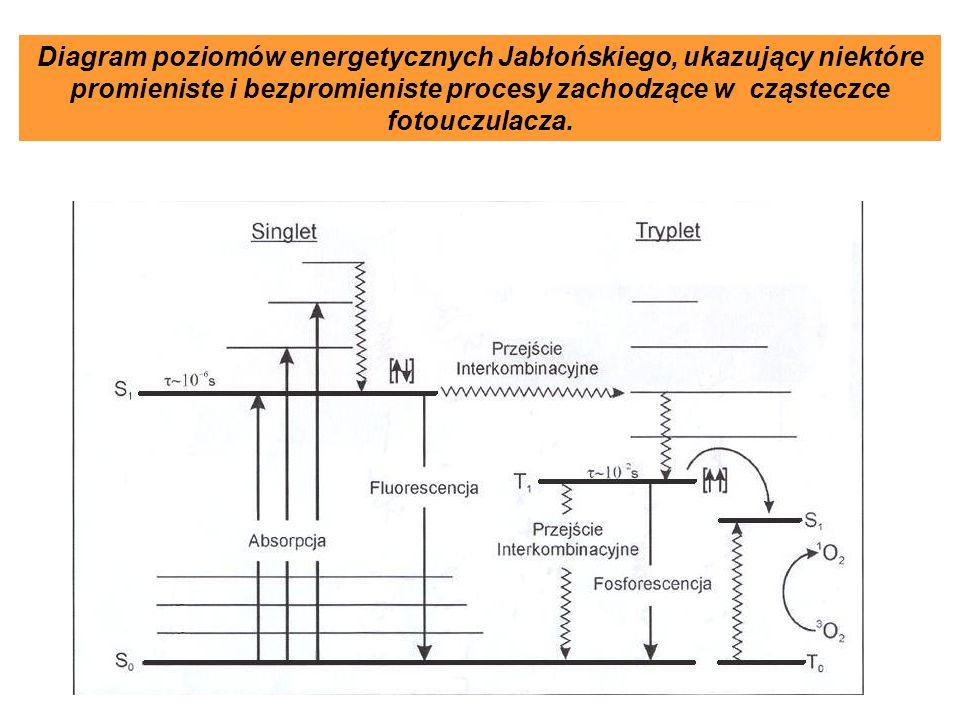 Diagram poziomów energetycznych Jabłońskiego, ukazujący niektóre