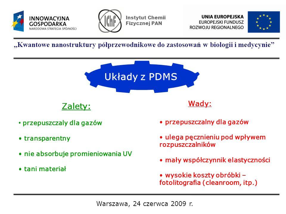 Instytut Chemii Fizycznej PAN