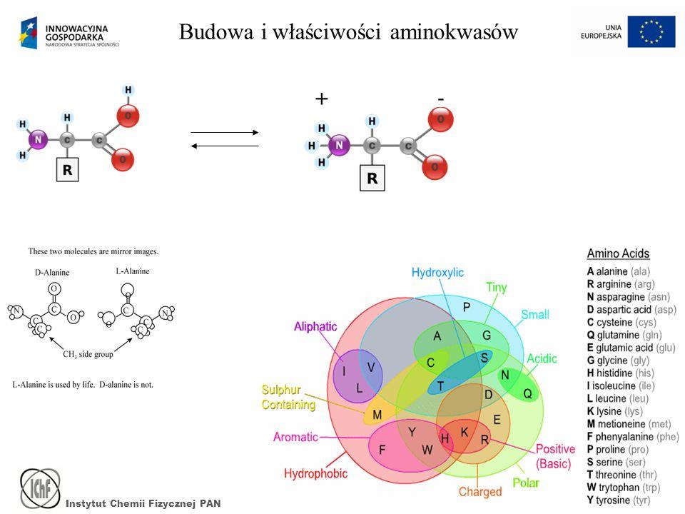 Budowa i właściwości aminokwasów