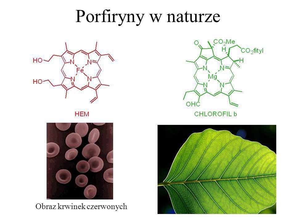 Porfiryny w naturze Obraz krwinek czerwonych