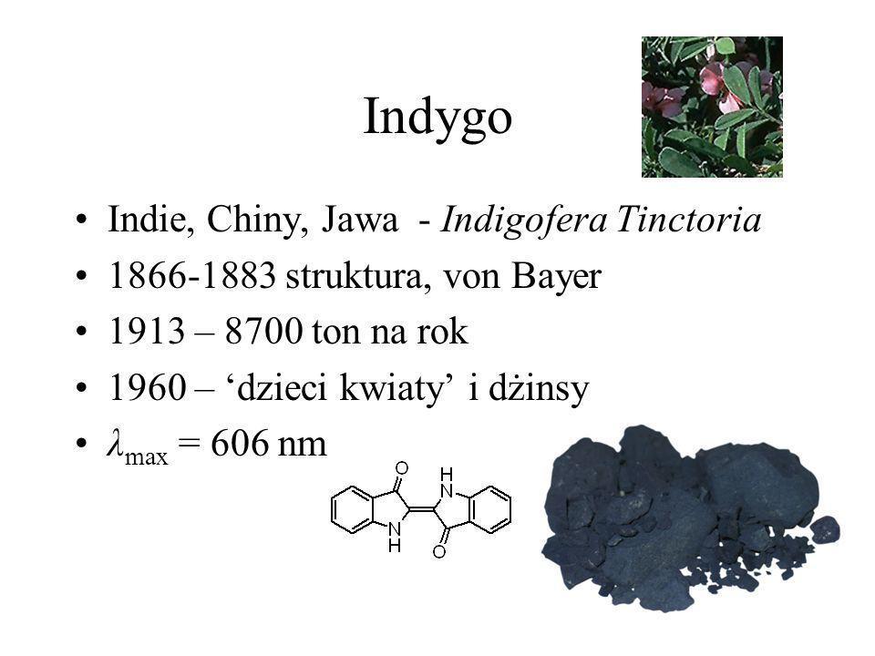 Indygo Indie, Chiny, Jawa - Indigofera Tinctoria
