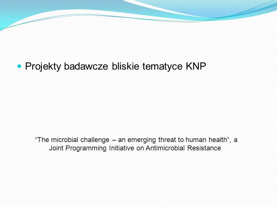 Projekty badawcze bliskie tematyce KNP