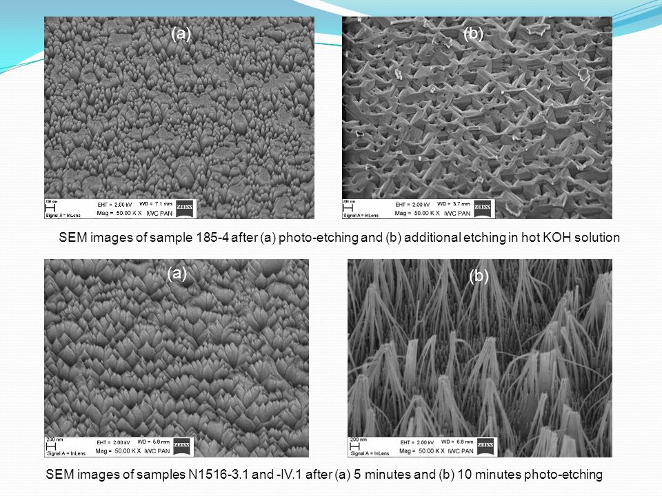 (a)(b) SEM images of sample 185-4 after (a) photo-etching and (b) additional etching in hot KOH solution.